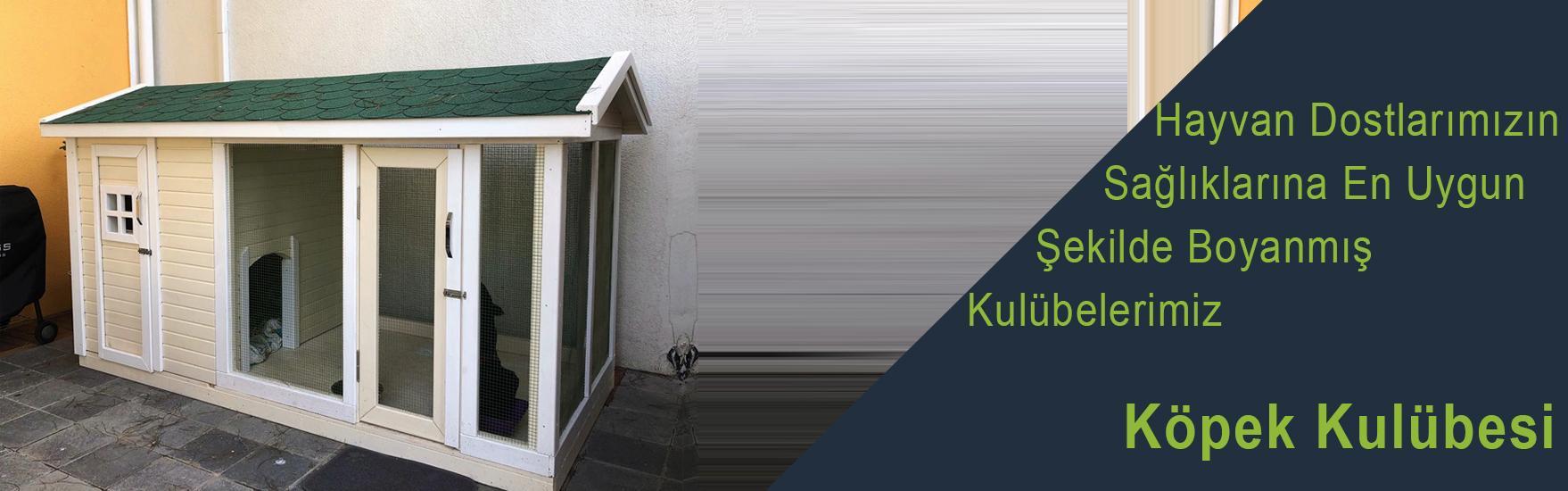 Köpek Kulubesi